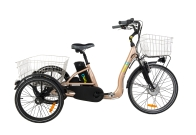 Tricycle électrique COMFORT 26
