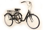 Vue 3/4 avant tricycle Marius