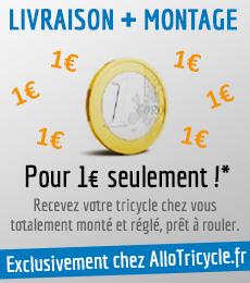 livraison et montage chez allotricycle.fr